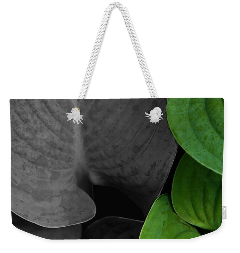 Black And White Weekender Tote Bag featuring the photograph Black And White And Green Leaves by Mike Nellums