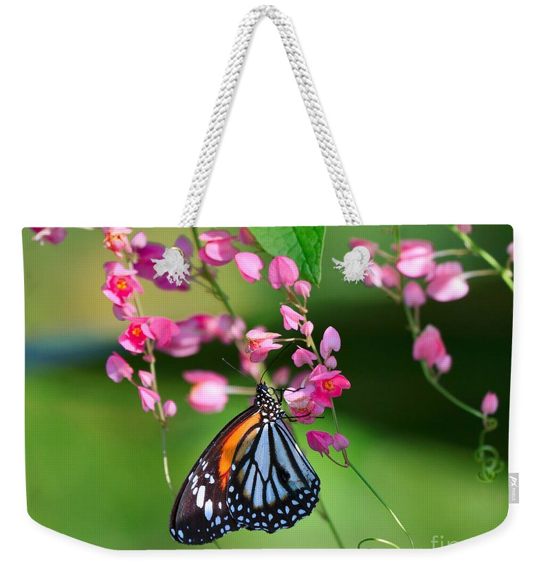 Pretty Weekender Tote Bag featuring the photograph Black Veined Tiger Butterfly by Louise Heusinkveld