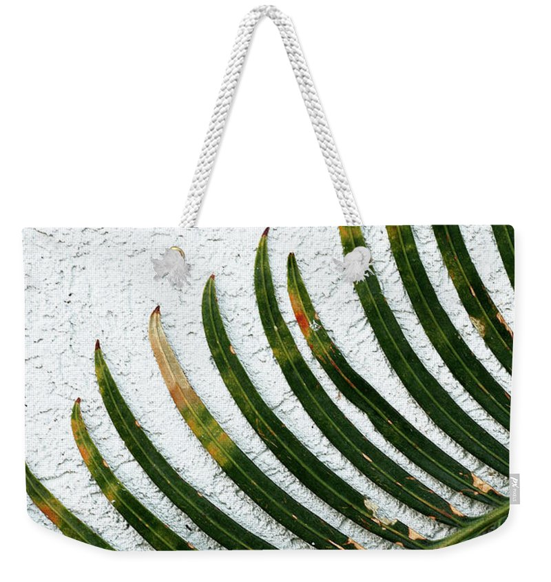 Blades Weekender Tote Bag featuring the photograph Bladed Leaf Against Stucco Wall by Mike Nellums