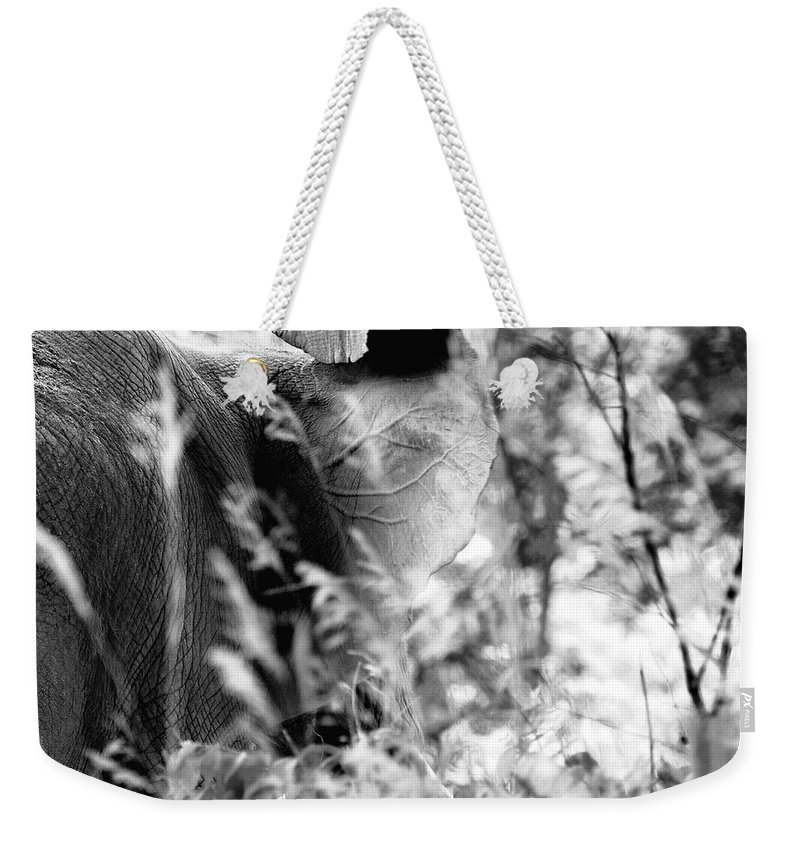 African Elephant Weekender Tote Bag featuring the photograph Blending Into Camouflage by Angela Rath