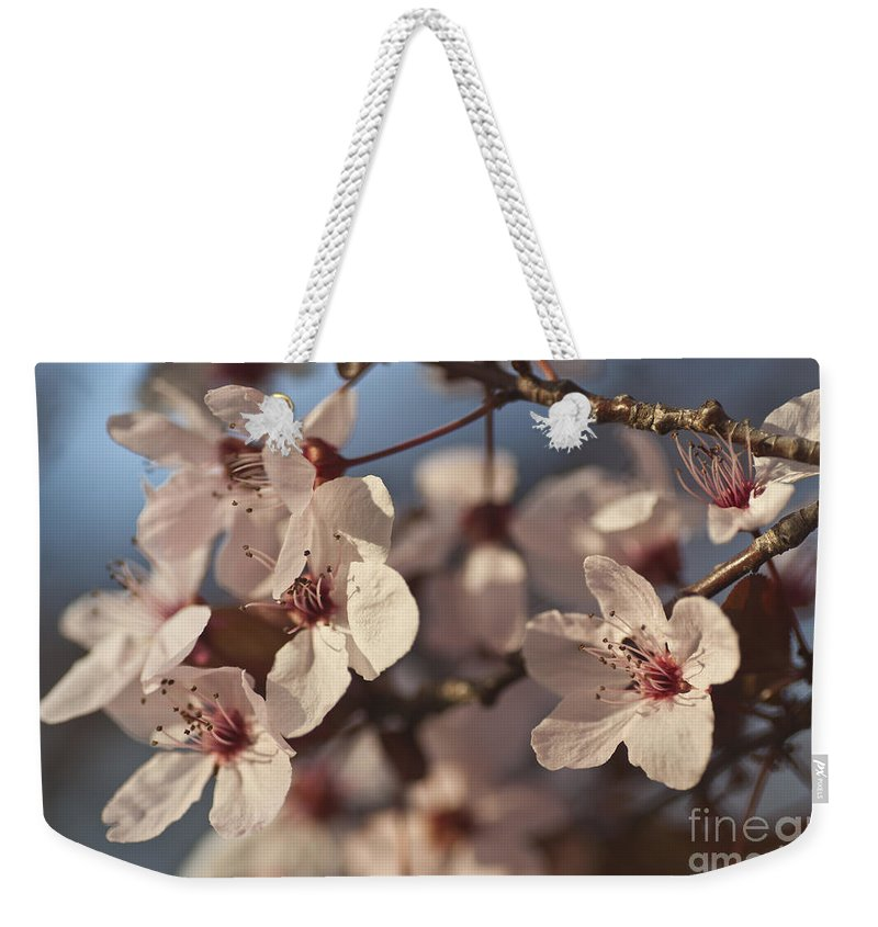 Blossom Weekender Tote Bag featuring the photograph Blossoms by Jim And Emily Bush