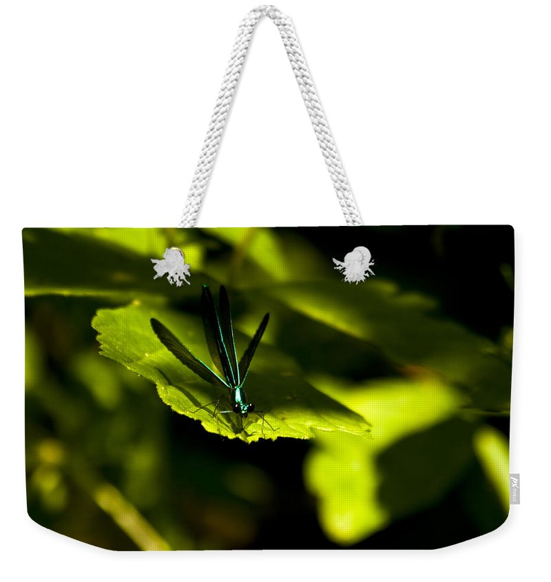 Dragonfly Photographs Weekender Tote Bag featuring the photograph Blue Bedazzle by Crystal Heitzman Renskers
