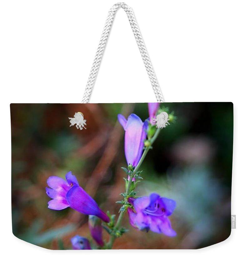 Beautiful Weekender Tote Bag featuring the photograph Blue Bells by Henrik Lehnerer