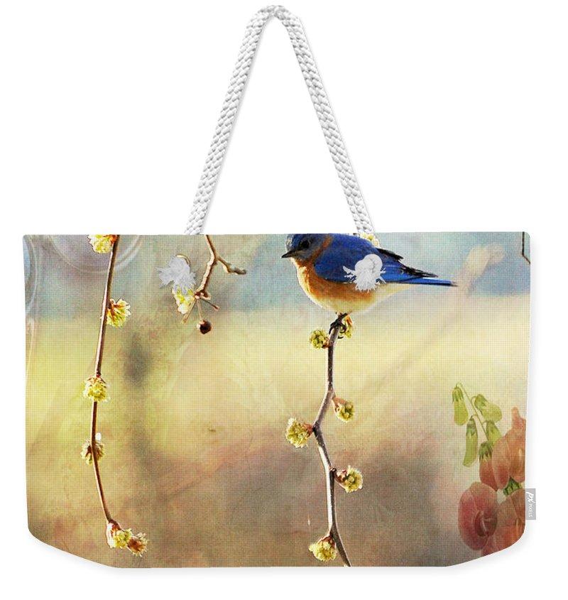 Blue Bird Weekender Tote Bag featuring the photograph Blue Bird by Todd Hostetter