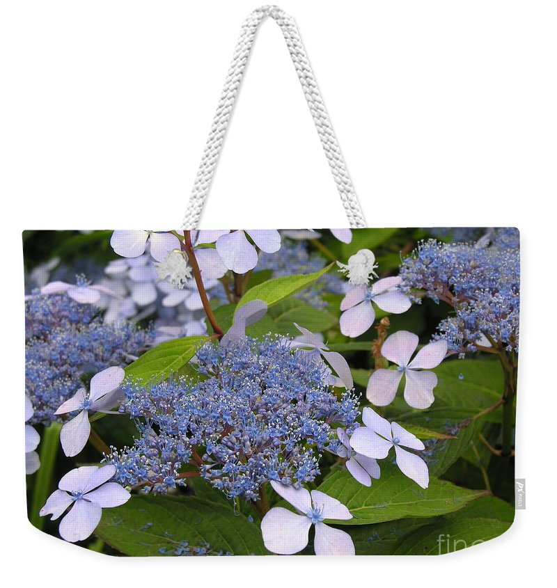 Blue Weekender Tote Bag featuring the photograph Blue by Diane Greco-Lesser
