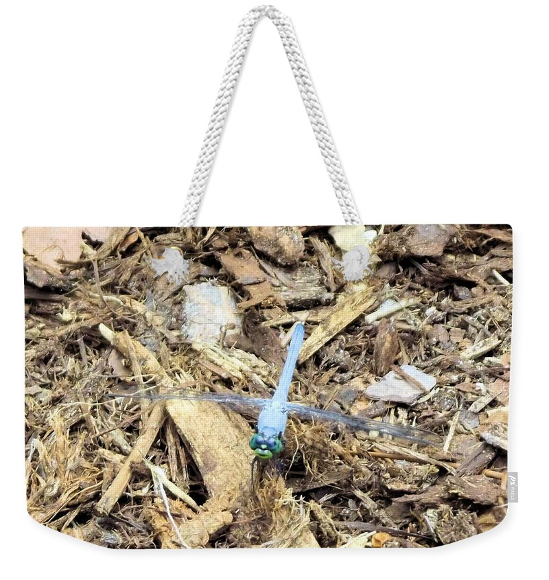 Blue Weekender Tote Bag featuring the photograph Blue Dragonfly by Jennifer Stockman