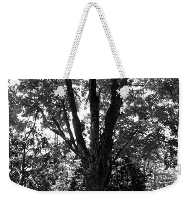 Black And White Weekender Tote Bag featuring the photograph Bold by Art Dingo