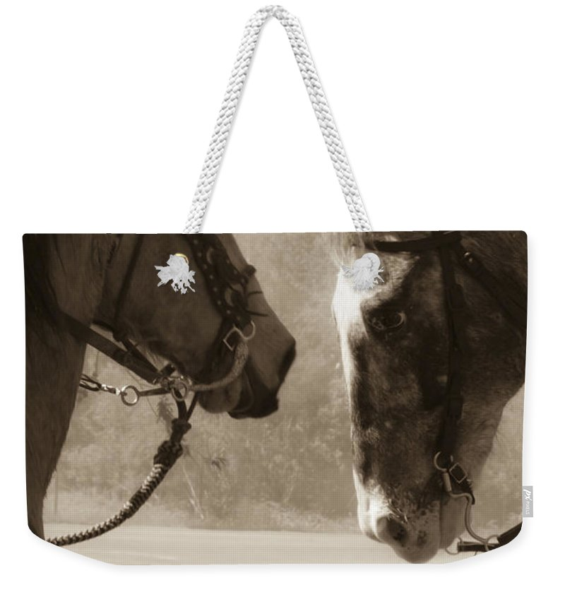 Horses Weekender Tote Bag featuring the mixed media Brief Encounter by Kim Henderson