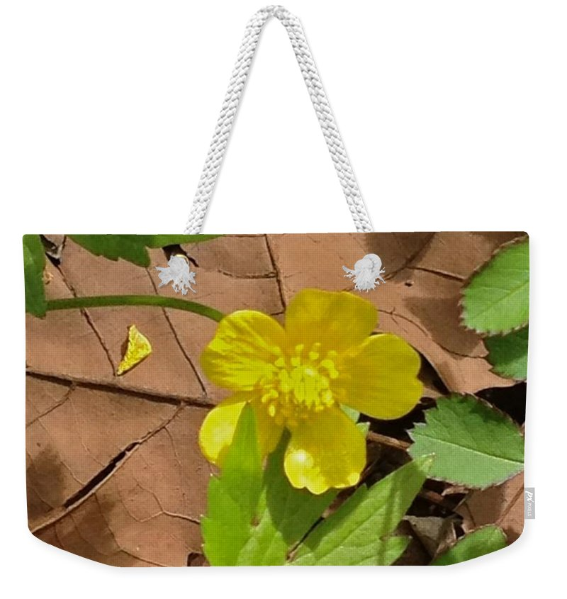 Michigan Stream Weekender Tote Bag featuring the photograph Bright Spring by Joseph Yarbrough