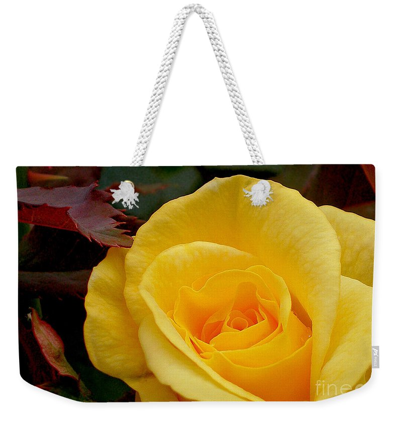 Photography Weekender Tote Bag featuring the photograph Bright Yellow Rose by Kaye Menner