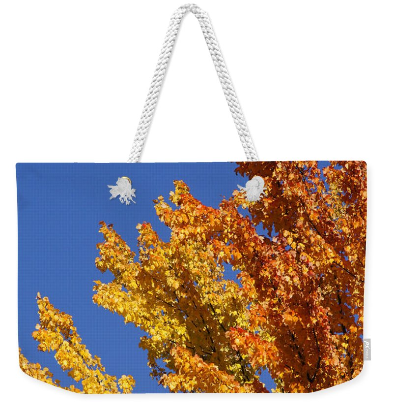 Blue Weekender Tote Bag featuring the photograph Brilliant Fall Color And Deep Blue Sky by Mick Anderson