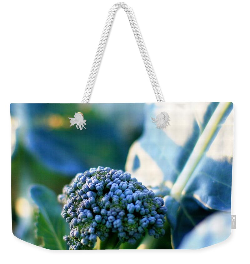Garden Weekender Tote Bag featuring the photograph Broccoli Sprout by Angela Rath