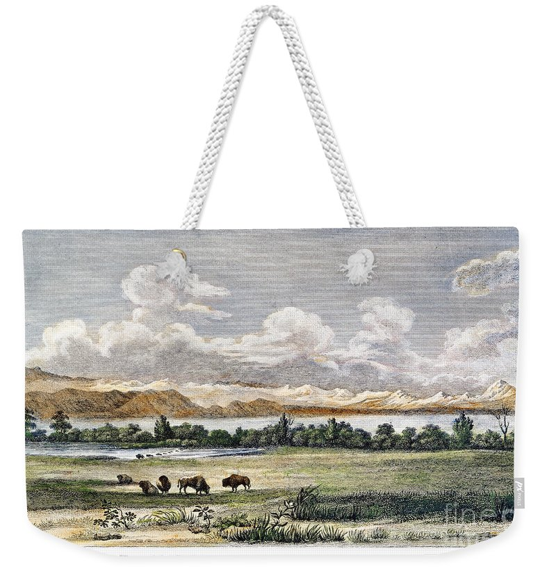 19th Century Weekender Tote Bag featuring the photograph Buffalo, 19th Century by Granger