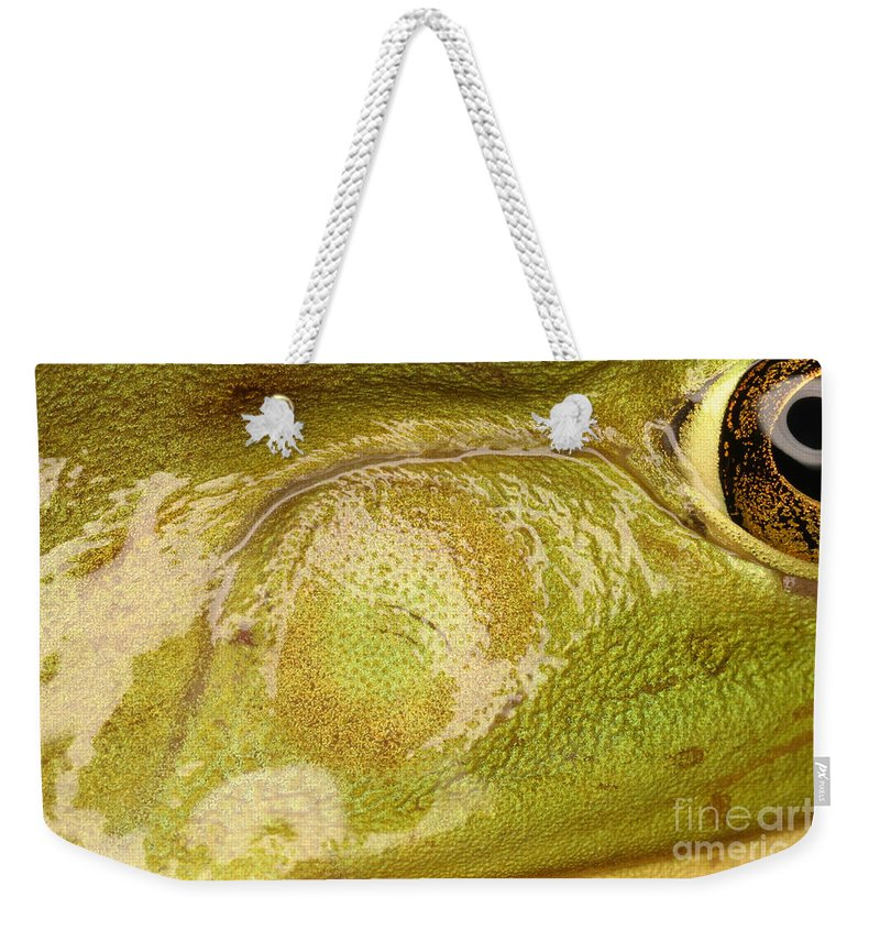 Animal Weekender Tote Bag featuring the photograph Bullfrog Ear by Ted Kinsman