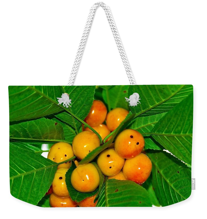 Black Weekender Tote Bag featuring the photograph Bunch Of Cherries by Svetlana Sewell