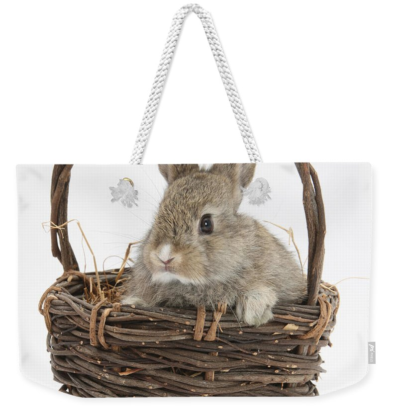 Animal Weekender Tote Bag featuring the photograph Bunny In A Basket by Mark Taylor