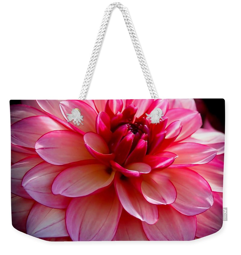 Dahlia Weekender Tote Bag featuring the photograph Burgundy Pedals by Athena Mckinzie