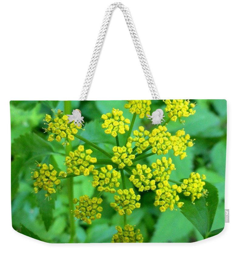Flower Weekender Tote Bag featuring the photograph Burst Of Flowers by Meandering Photography