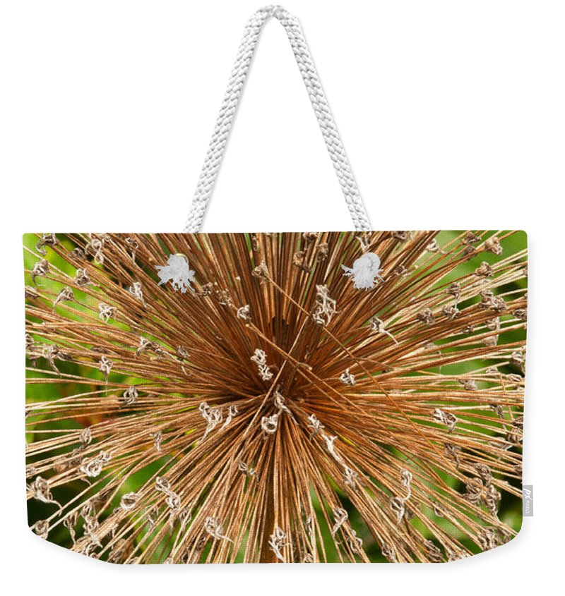 bridge Of Flowers Weekender Tote Bag featuring the photograph Burst by Paul Mangold