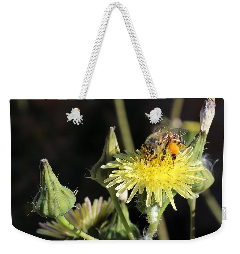 Floral Weekender Tote Bag featuring the photograph Busy Bee by Kume Bryant