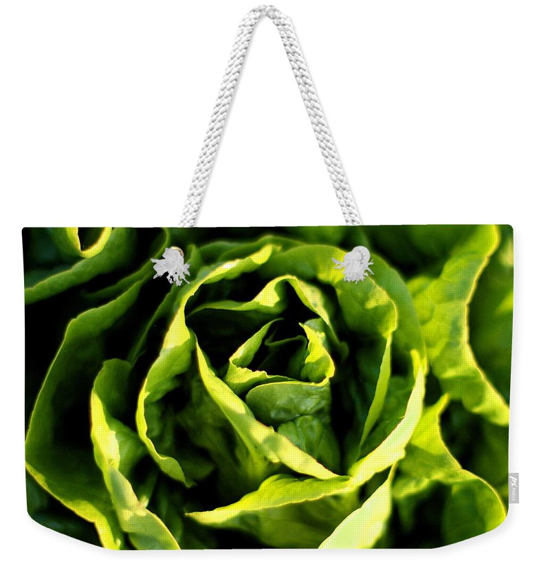 Garden Weekender Tote Bag featuring the photograph Buttercrunch Lettuce From Above by Angela Rath