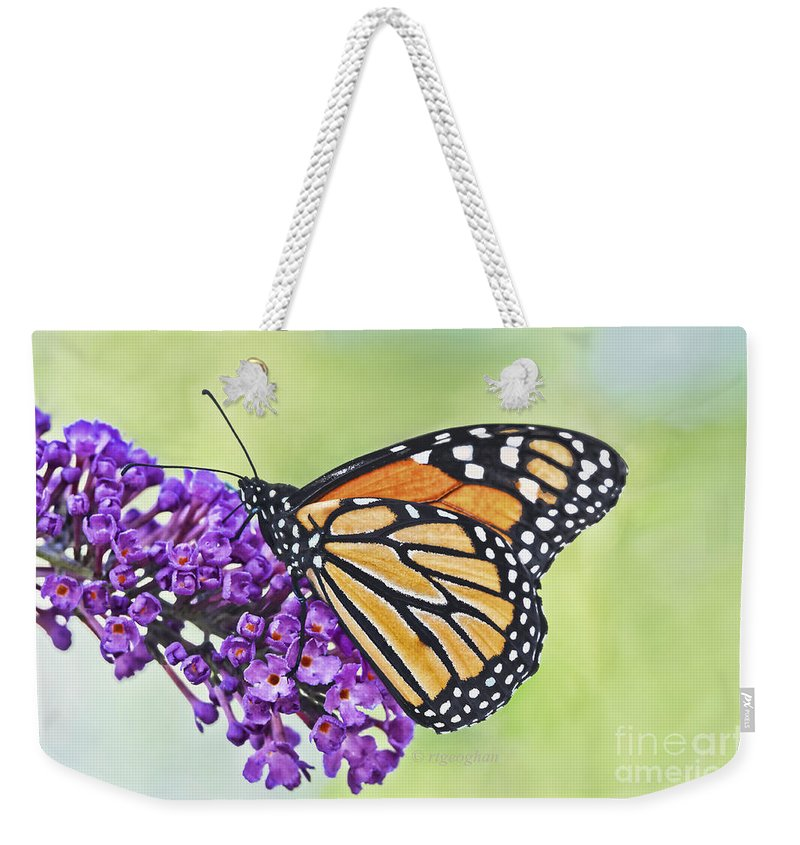 Monarch Butterfly Weekender Tote Bag featuring the photograph Butterfly Beauty-monarch by Regina Geoghan