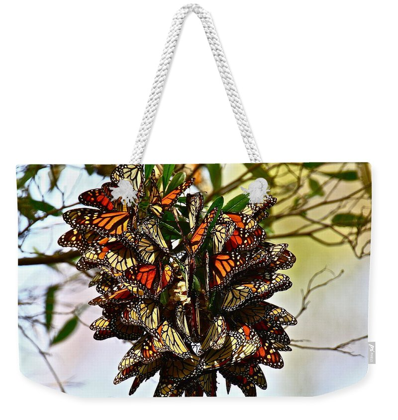 Butterfly Weekender Tote Bag featuring the photograph Butterfly Bouquet by Diana Hatcher