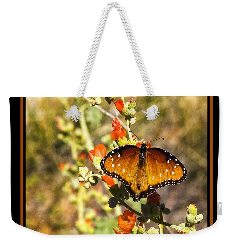 Butterfly Weekender Tote Bag featuring the photograph Butterfly by Larry White