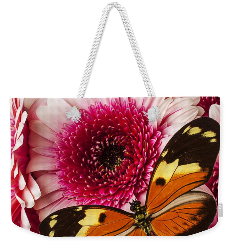 Butterfly Eduador Pichincha Tinalandia Weekender Tote Bag featuring the photograph Butterfly On Pink Mum by Garry Gay