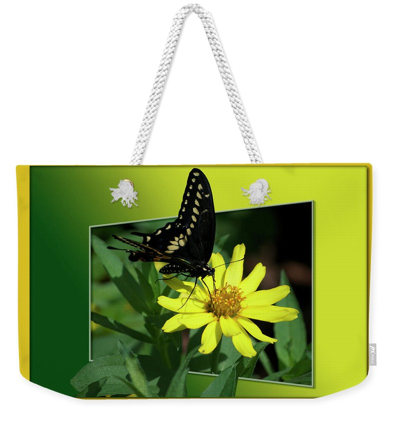 Test Weekender Tote Bag featuring the photograph Butterfly Swallowtail 01 16 By 20 by Thomas Woolworth