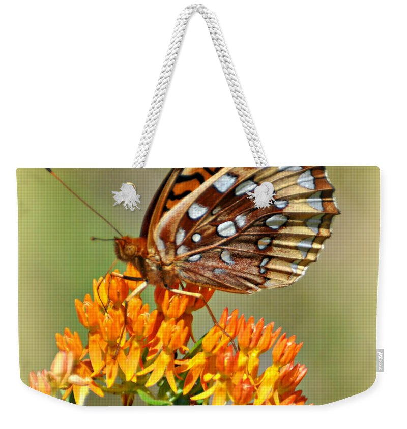 Butterfly Weekender Tote Bag featuring the photograph Butterfly Weed 1 by Marty Koch