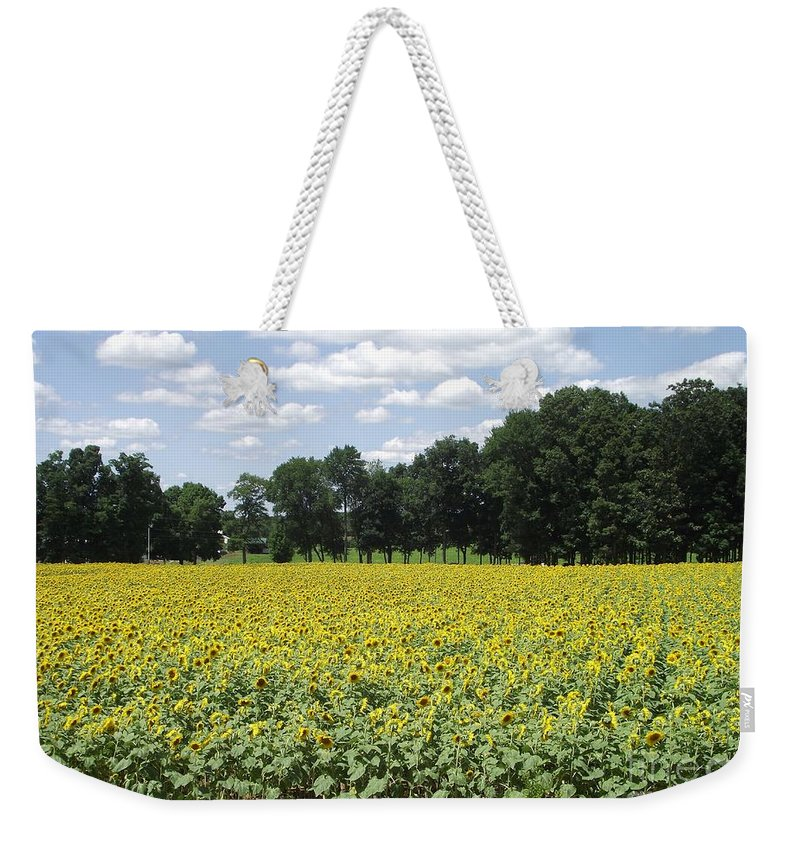 Buttonwood Dairy Farm Weekender Tote Bag featuring the photograph Buttonwood Farm 2 by Michelle Welles