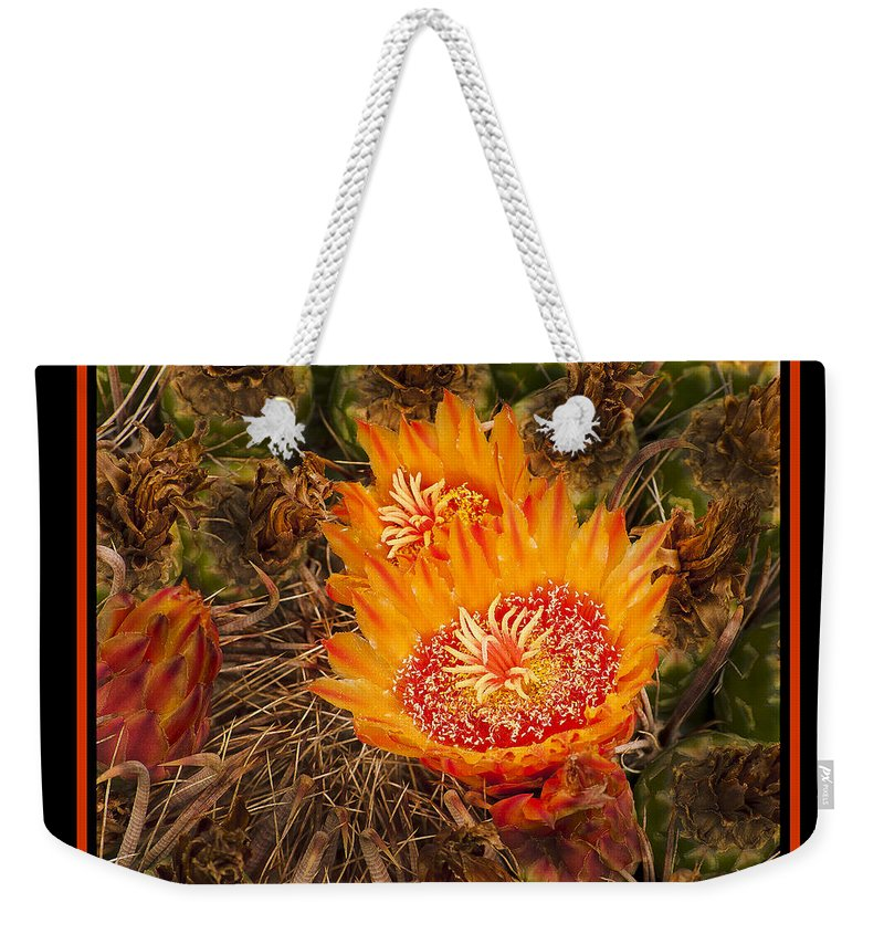 Cactus Weekender Tote Bag featuring the photograph Cactus Flower 3 by Larry White