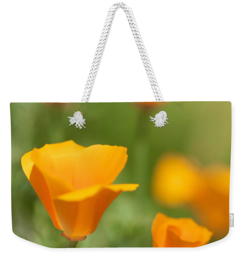 California Poppies Weekender Tote Bag featuring the photograph Cal Poppies by Brooke Roby