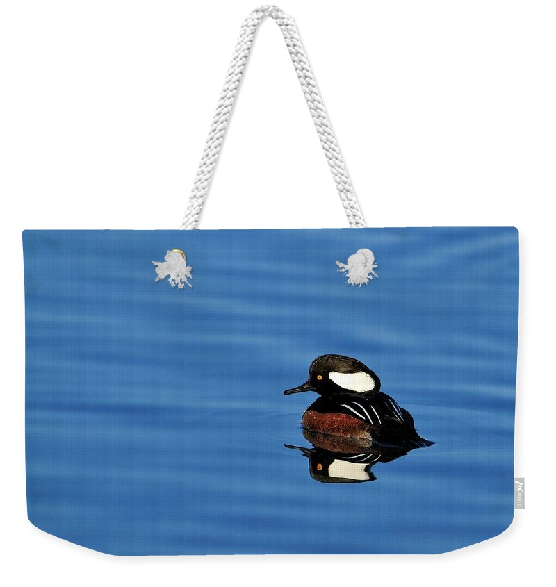 Hooded Weekender Tote Bag featuring the photograph Calm Reflection by Bill Dodsworth