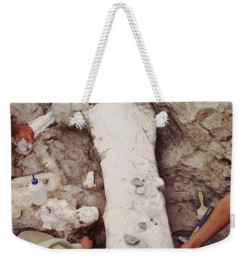 Femur Weekender Tote Bag featuring the photograph Camarasaurus Femur Covered In Burlap by Ted Kinsman