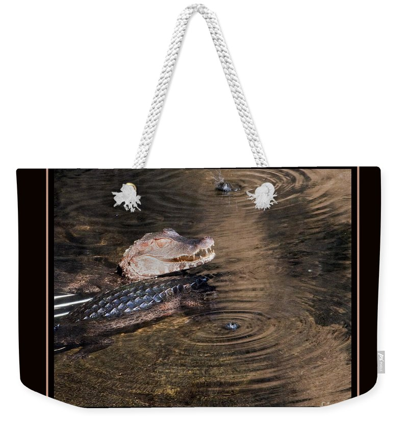 Camen Weekender Tote Bag featuring the photograph Camen Smiling by Darleen Stry