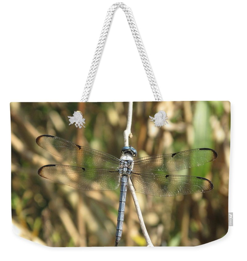 Weekender Tote Bag featuring the photograph Cammo by Michele Nelson