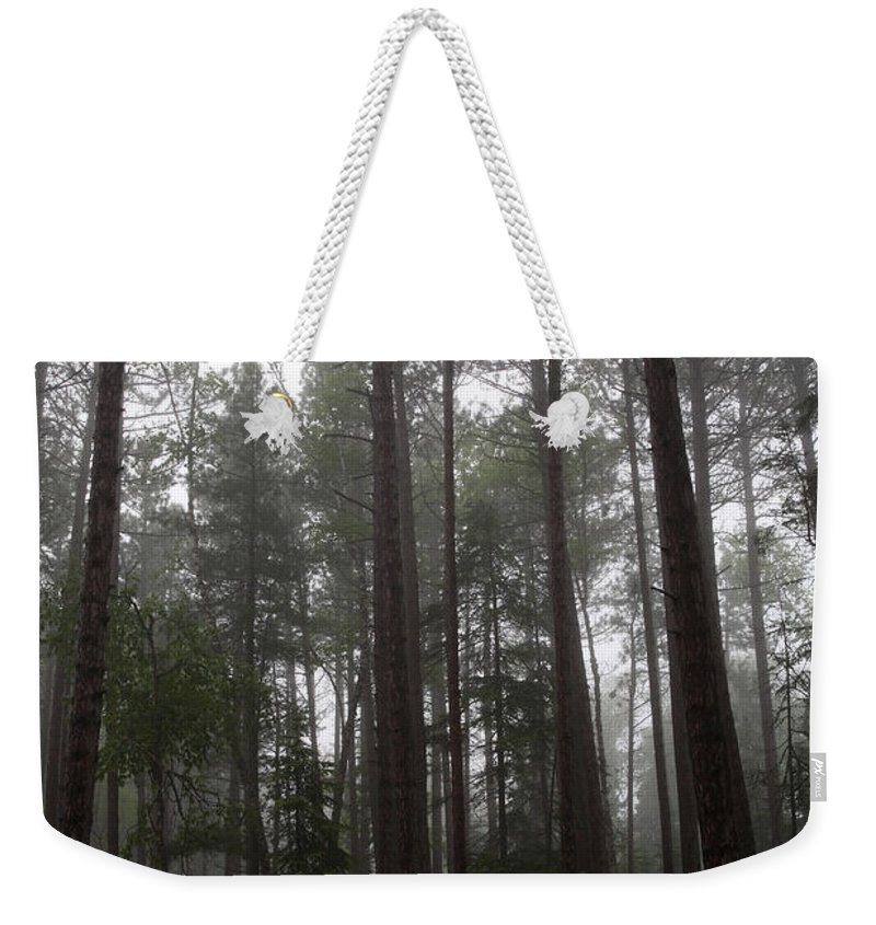 National Park Weekender Tote Bag featuring the photograph Canadian Forest by Ted Kinsman