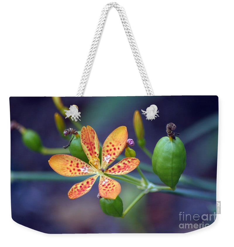 Candy Lily Weekender Tote Bag featuring the photograph Candy Lily by Living Color Photography Lorraine Lynch