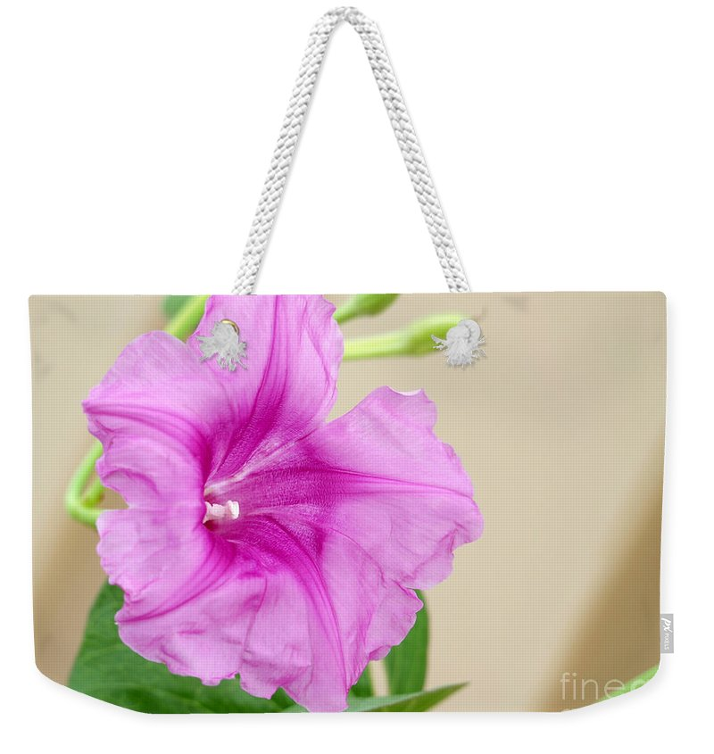Landscape Weekender Tote Bag featuring the photograph Candy Pink Morning Glory Flower by Sabrina L Ryan