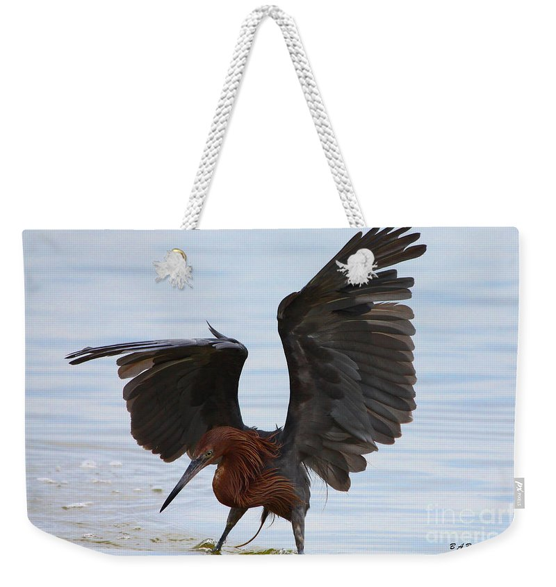 Reddish Egret Weekender Tote Bag featuring the photograph Canopy Hunting by Barbara Bowen