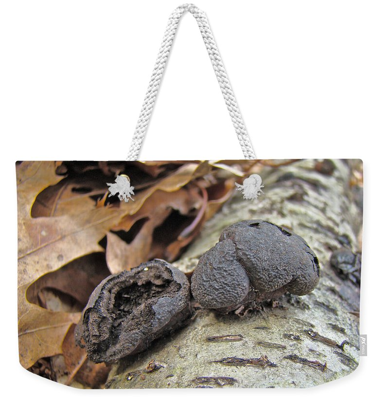 Mushroom Weekender Tote Bag featuring the photograph Carbon Balls Fungi - Daldinia Concentrica by Mother Nature