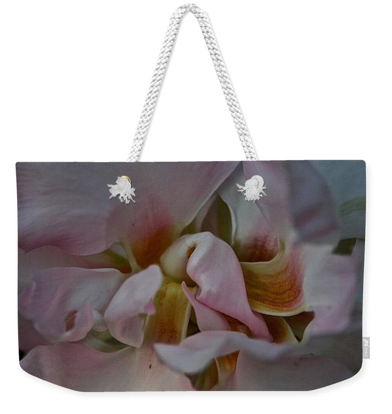 Outdoors Weekender Tote Bag featuring the photograph Cardinal Climber by Susan Herber