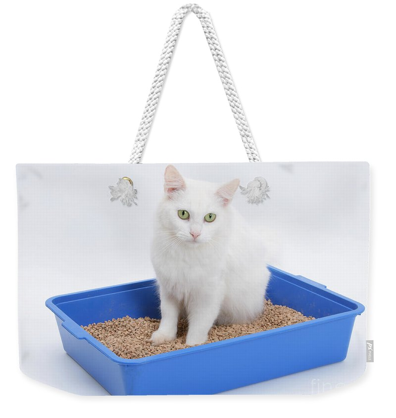 Animal Weekender Tote Bag featuring the photograph Cat Using Litter Tray by Mark Taylor
