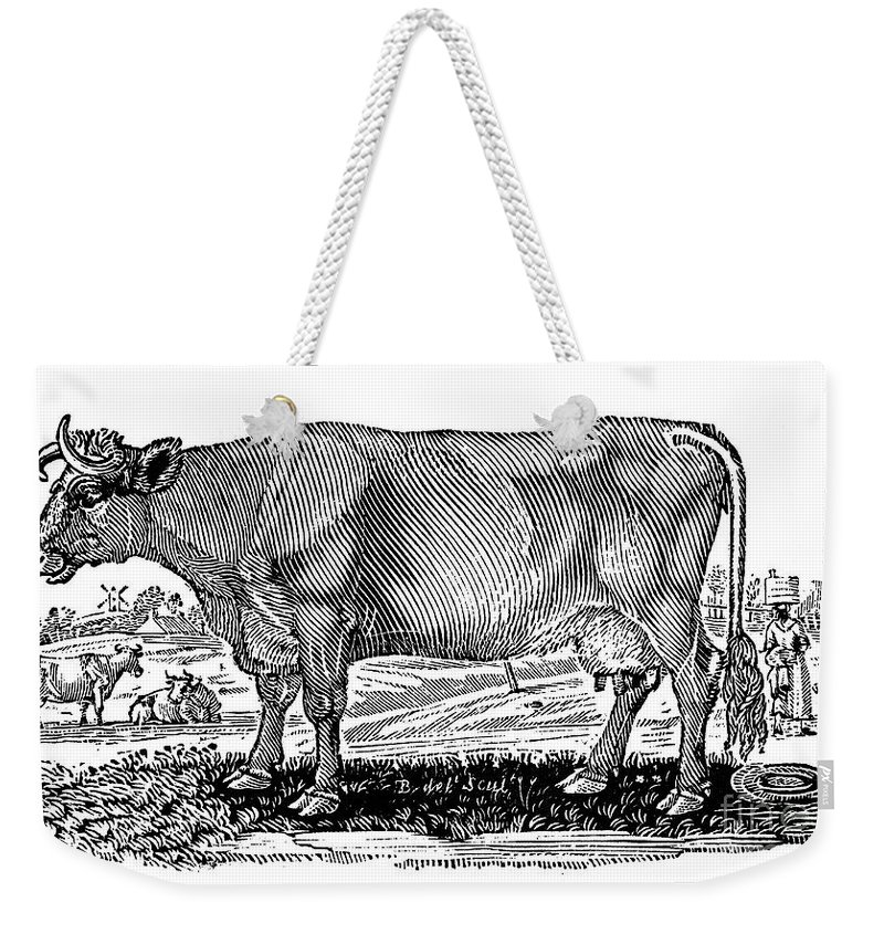1790 Weekender Tote Bag featuring the photograph Cattle by Granger