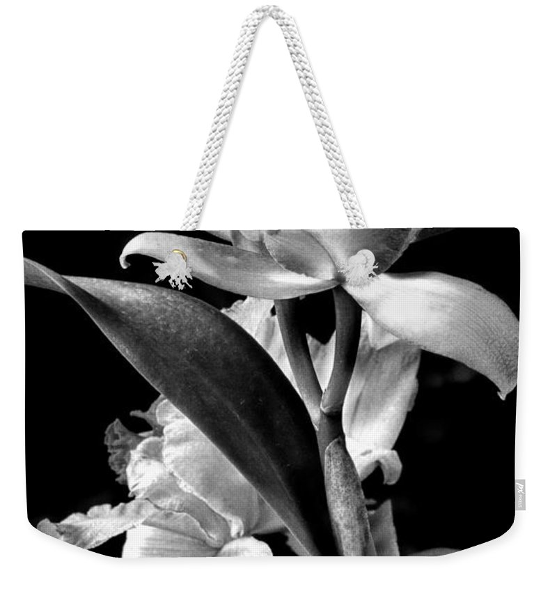 Cattleya Weekender Tote Bag featuring the photograph Cattleya - Bw by Christopher Holmes