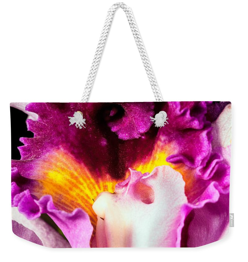 Orchid Weekender Tote Bag featuring the photograph Cattleya II by Christopher Holmes