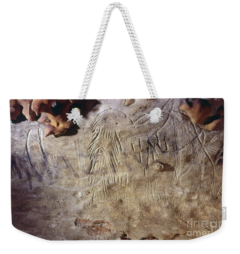10 Weekender Tote Bag featuring the photograph Cave Art: Mammoth by Granger