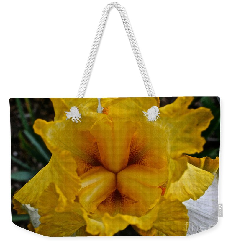 Plant Weekender Tote Bag featuring the photograph Center Point by Susan Herber